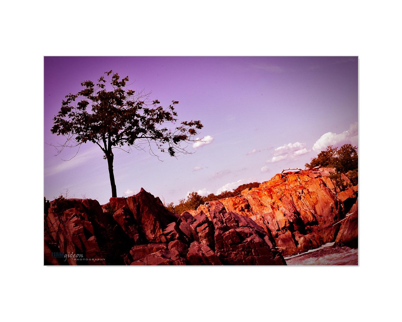 creative_landscape_Page_02