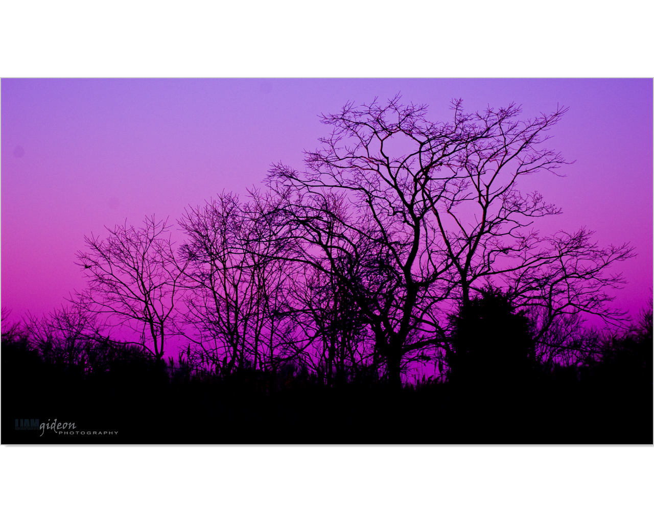 creative_landscape_Page_09